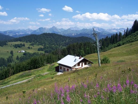 Alpenüberquerung mit ASI