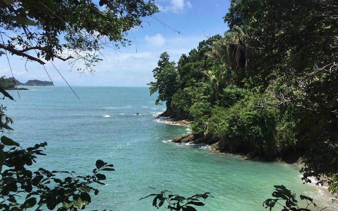 Costa Rica – Pura Vida im Dschungel
